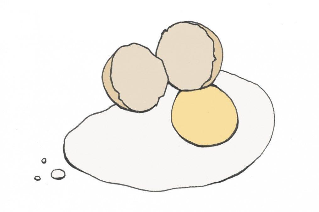 B_complex_egg