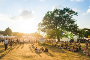 Healthy's summer festival tips and picks