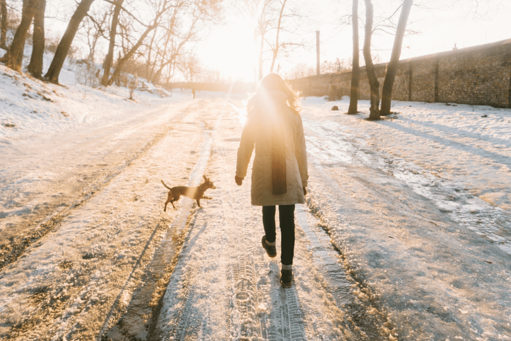 How to embrace winter